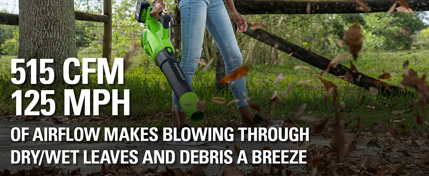 Greenworks Cordless Axial Blower