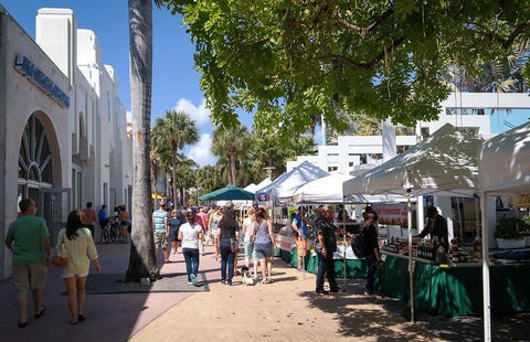 Miami is not only an ideal beach resort, but also a great place to shop. There are entire streets in the city where shopaholics can immerse themselves in the fascinating world of shopping.