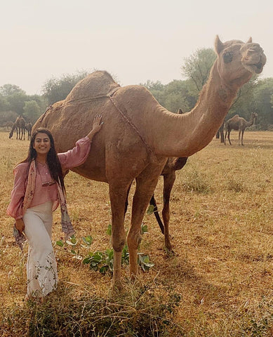 CAMEL CONSERVATION PROJECT