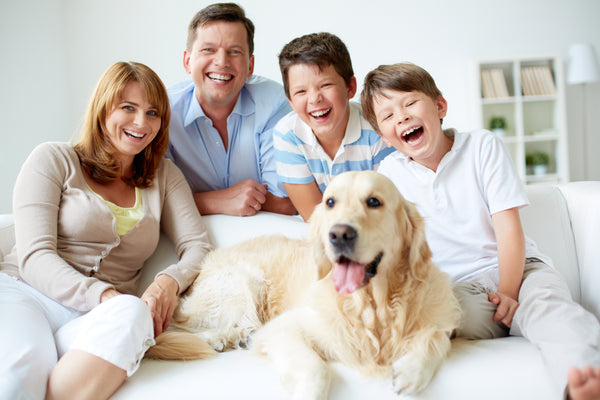 Family time with kids and pets