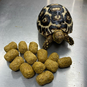 Mazuri Tortoise Diet - David's Jungle