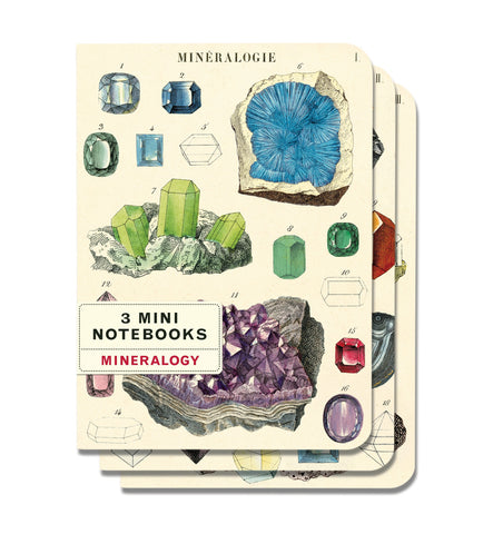 Cavallini & Co. Mineralogy Mini Notebooks Set