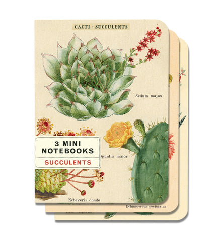Cavallini & Co. Succulents Mini Notebooks Set
