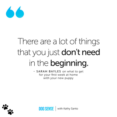 """[Image Quote: """"There are a lot of things that you just don't need in the beginning."""" - Sarah Bayles]"""