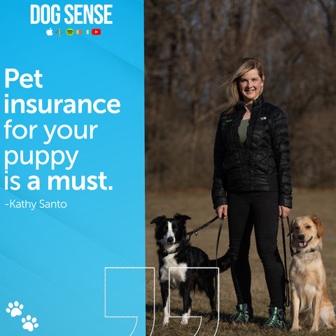 """[Image Quote: """"Pet insurance for your puppy is a must."""" - Kathy Santo]"""