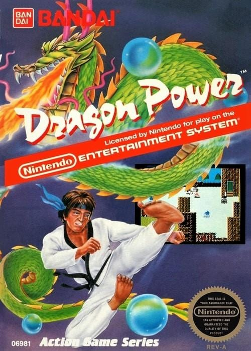 Dragon Power Nintendo NES Game - Gandorion Games