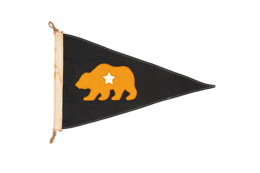Slightly Choppy - Flag - CA Bear