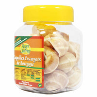 French Escargot Shells, Extra Large, 18 Pcs by Roger Dutruy