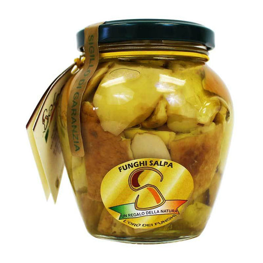 Salpa Porcini Mushrooms in Oil, 9.9 oz (280g)