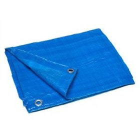 HOWARD BERGER V1012 Reinforced Plastic Tarp (10ft x 12ft) - Fresh Colony