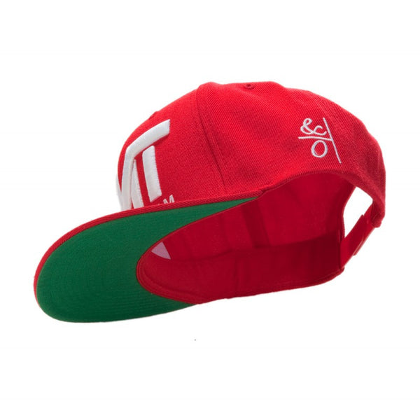THE MONEY TEAM - COURTSIDE SNAPBACK HAT - Fresh Colony  - 5
