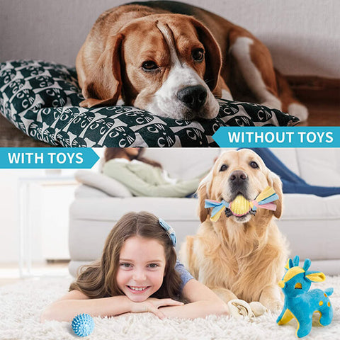 Toozey-DogToys-Before-and-After