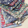 Liberty Fabric Pack ~ Village Green