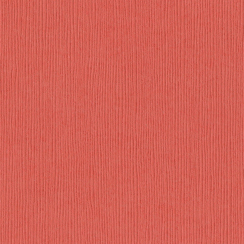 Solid Color Bazzill Scrapbook Paper Arroyo