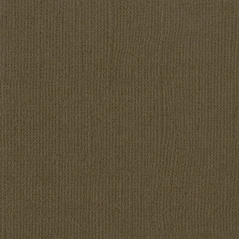 Solid Color Bark Bazzill Scrapbook Paper