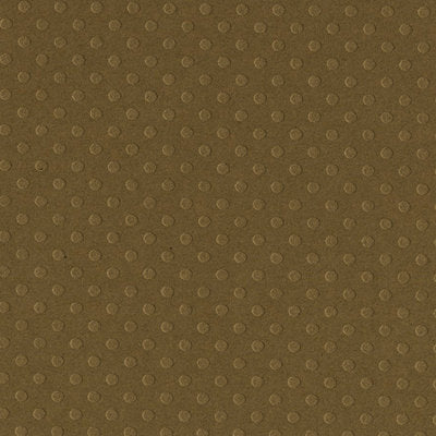 Solid Color Bazzill Scrapbook Paper Dotted Swiss Boardwalk