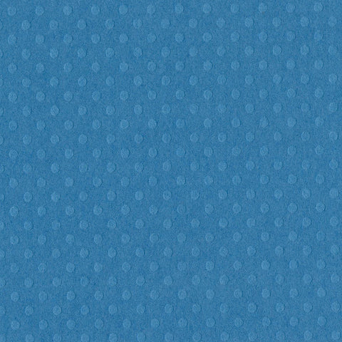 Solid Color Bazzill Scrapbook Paper Dotted Swiss Surfs Up