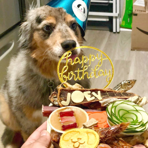 dog wearing a birthday hat with barkuterie board