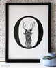 enchanted: o deer print