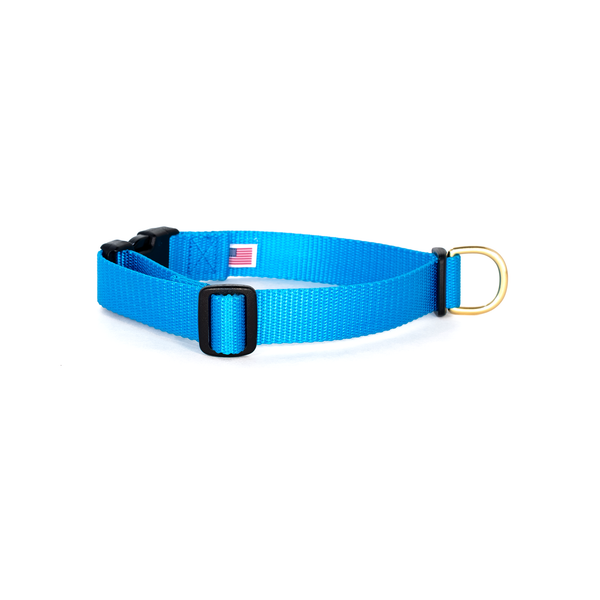 Snap Collar: Blue