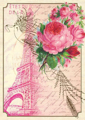 BN5053-Aviary Eiffel Boxed Note