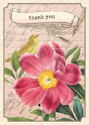 BN5054-Aviary Tea Rose Boxed Note