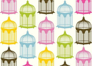 BN5071-Brights Bird Cage Boxed Note