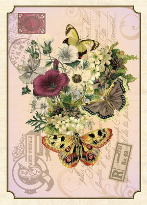 BN5094-Aviary Butterfly Boxed Note