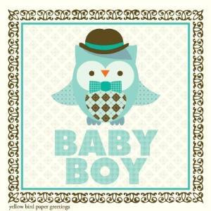 Baby Boy Owl congratulations Gift tag