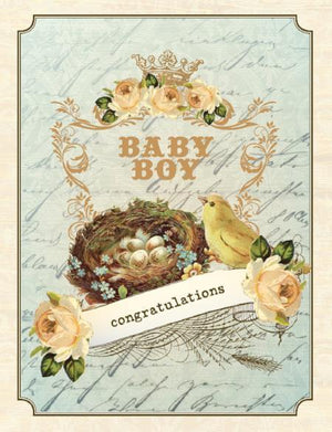 Vintage Birds Nest congratulations new baby boy greeting card