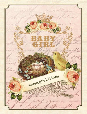 Vintage birds nest new baby girl greeting card