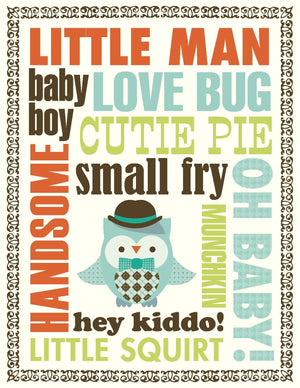 New Baby Boy Owl greeting card