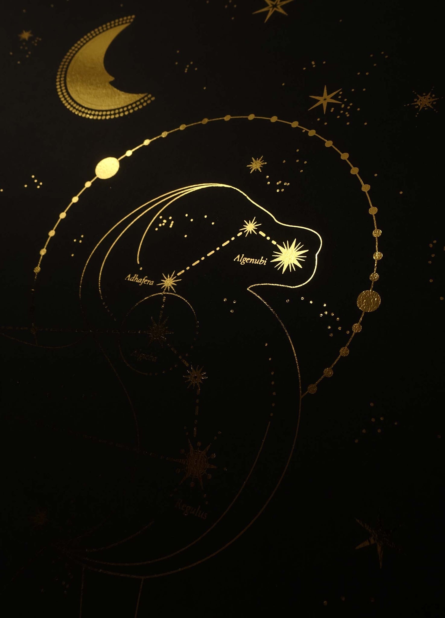 Leo Constellation gold foil art print on black paper by Cocorrina & Co Studio and Shop