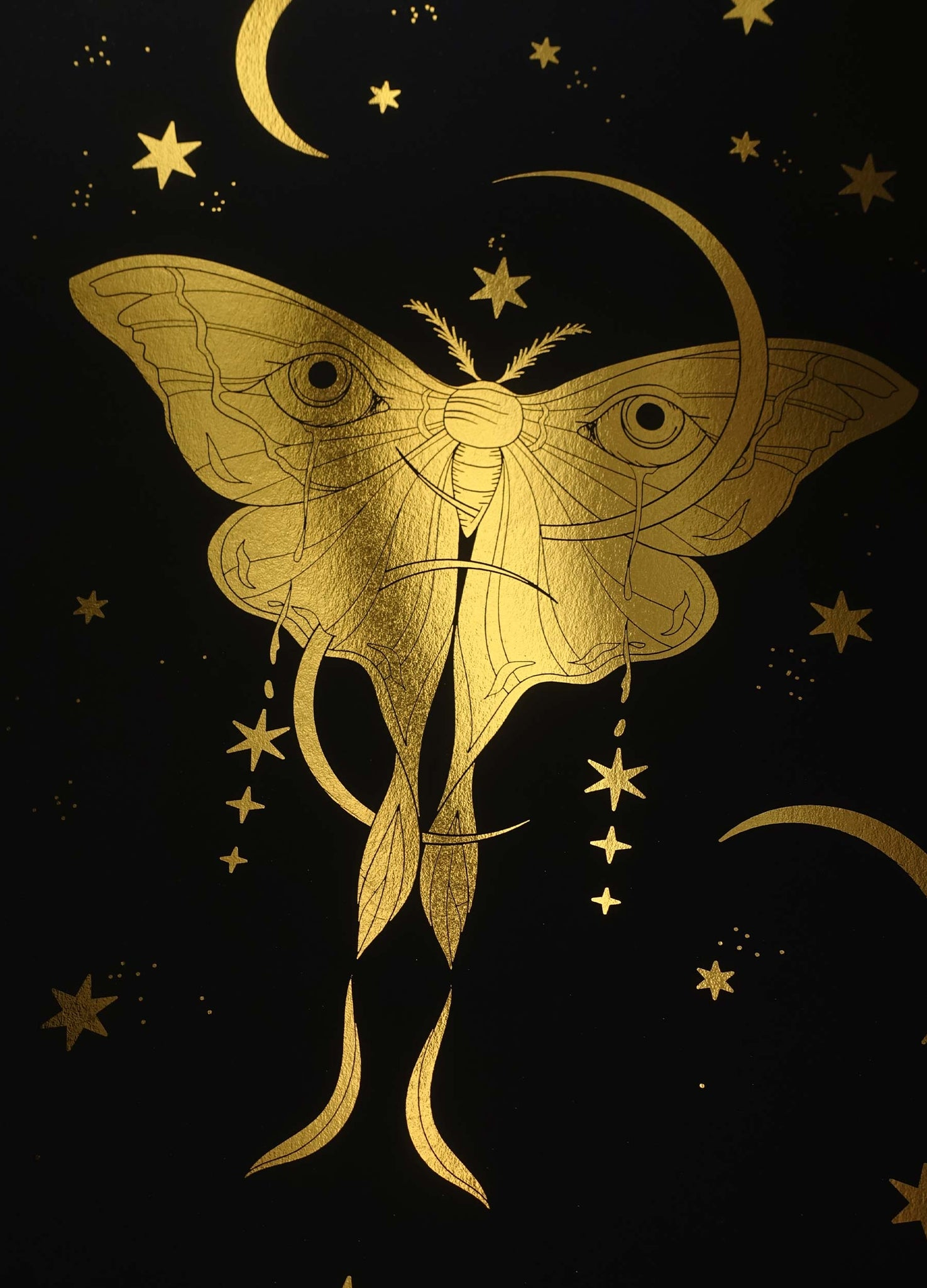 Moon Moth gold foil art print on black paper by Cocorrina & Co