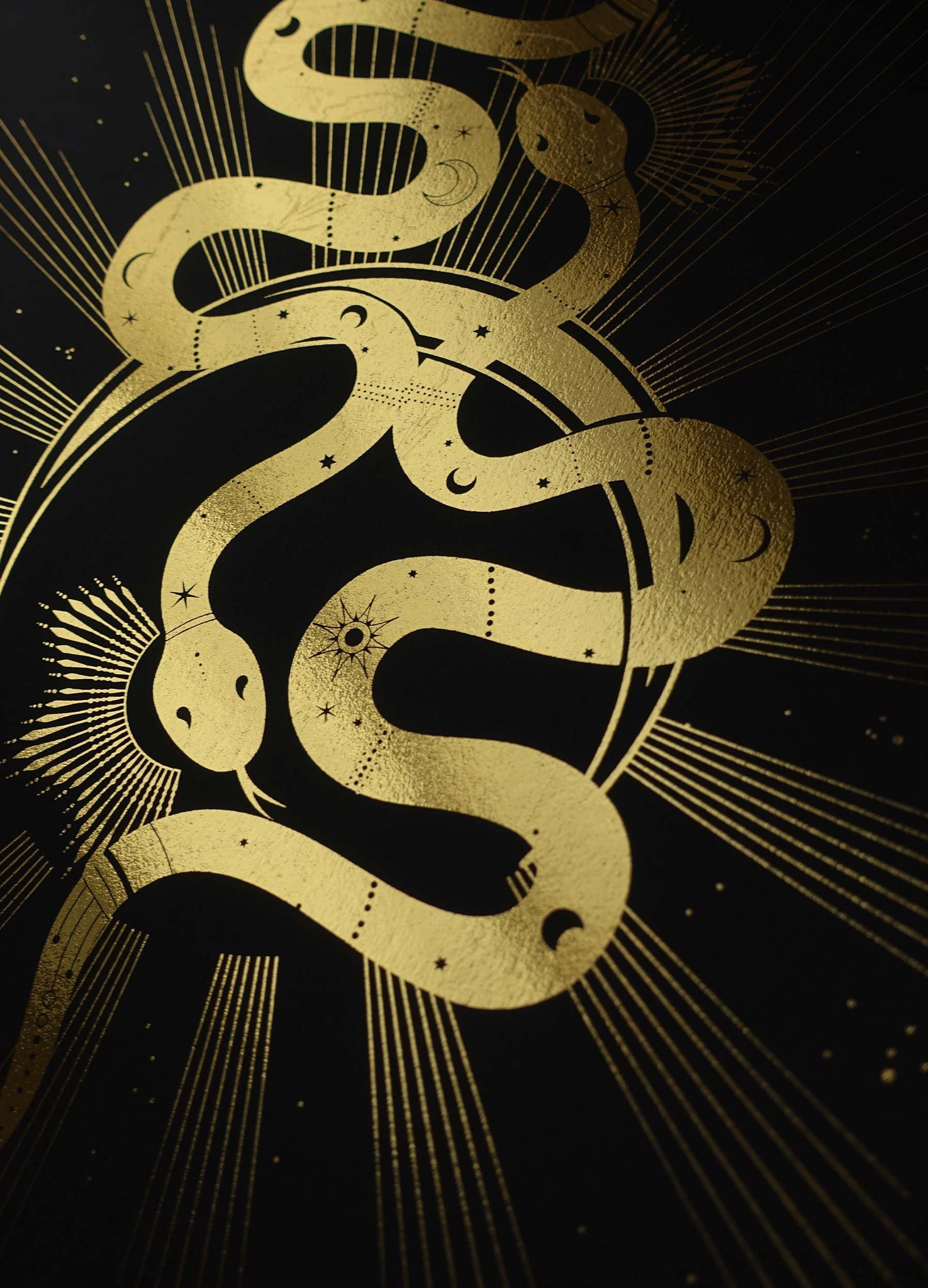 Twin Flames, soulmate snakes artwork print with gold foil on black paper by artist and studio Cocorrina