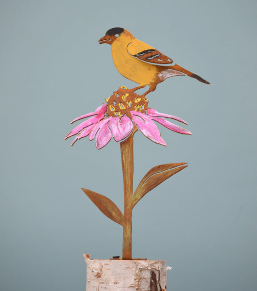 Goldfinch on Cone Flower - Painted