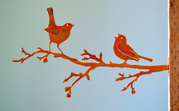 Warbler and Robin on Branch