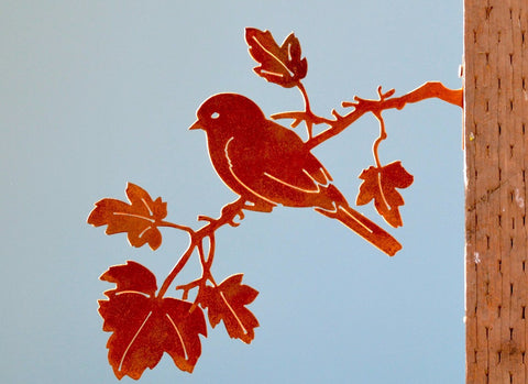 Bluebird on Maple Branch