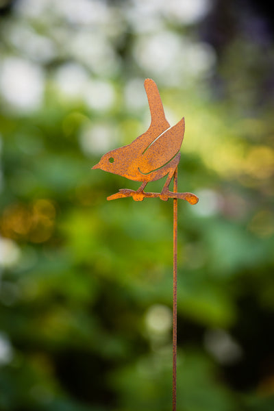 Wren on a Branch Pick