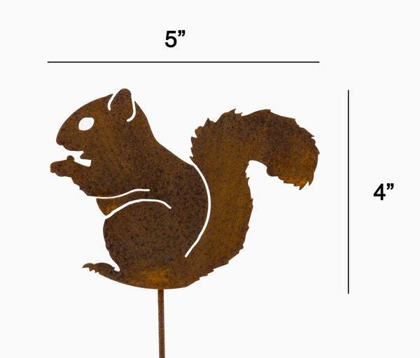 Nibbling Squirrel Pick
