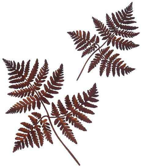 Bracken Ferns - Wall Art