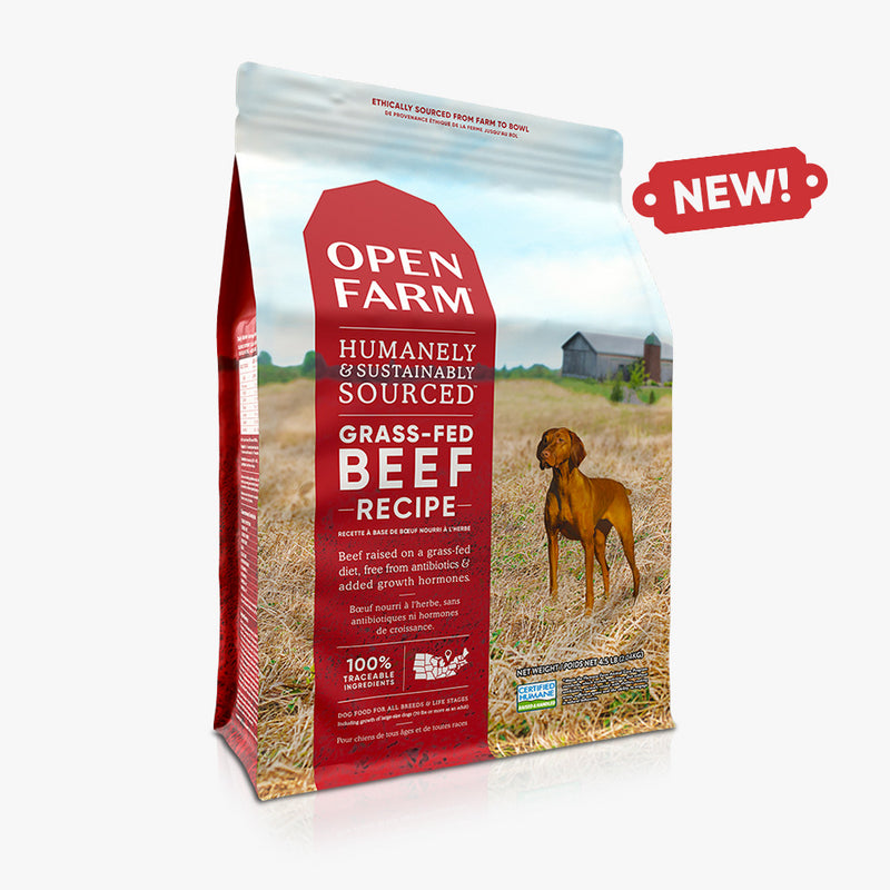 OPEN FARM Grass-Fed Beef Dry Dog Food