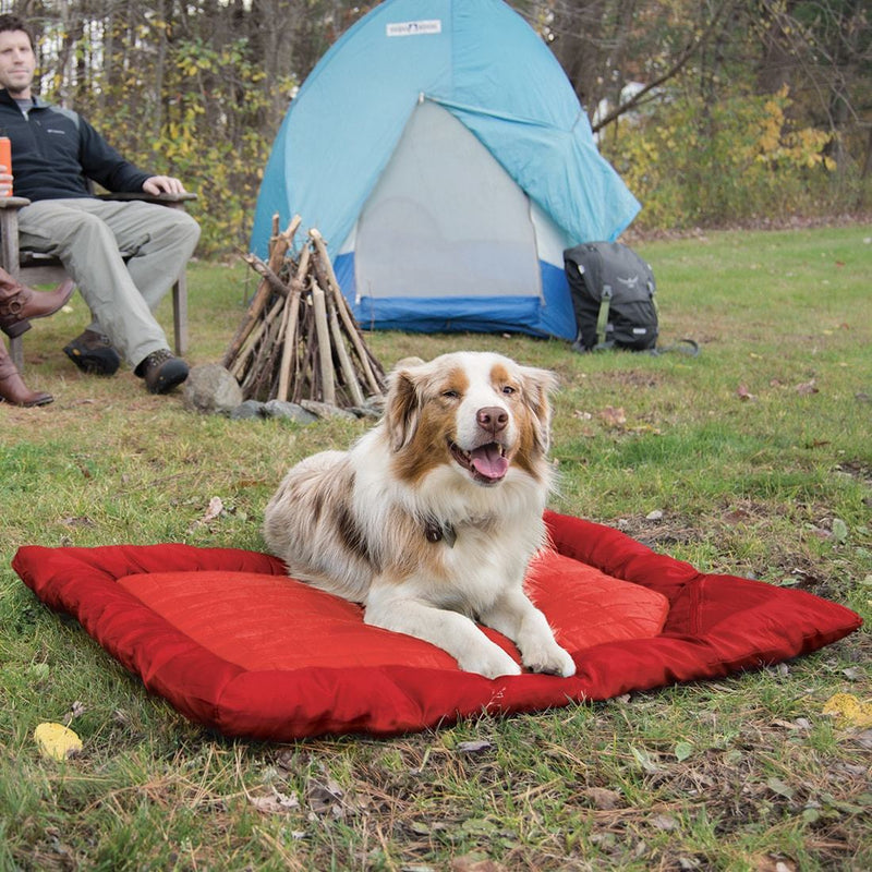 KURGO LOFT WANDER DOG BED