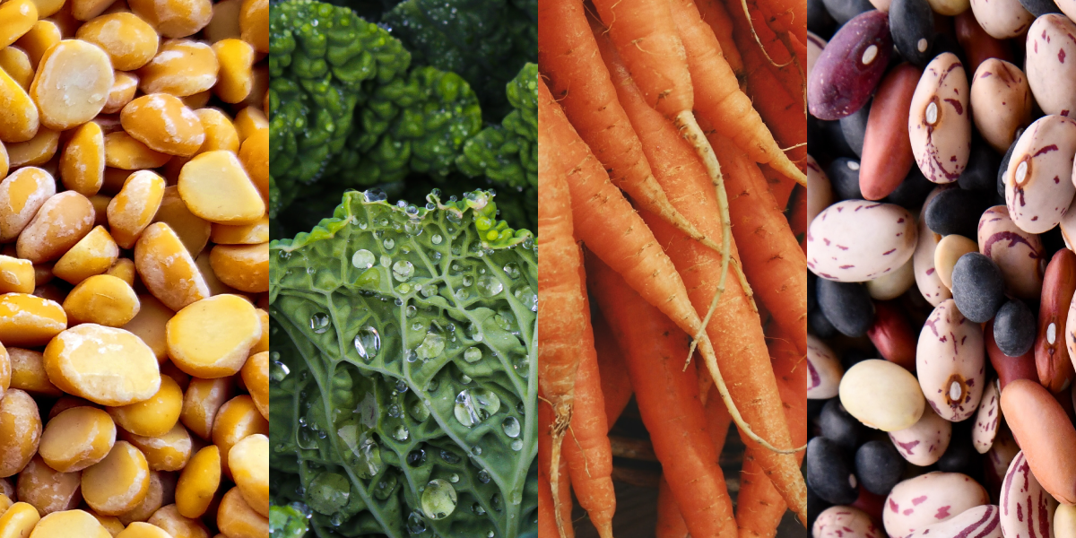 How the foods we eat affect our mental health - Nutrova