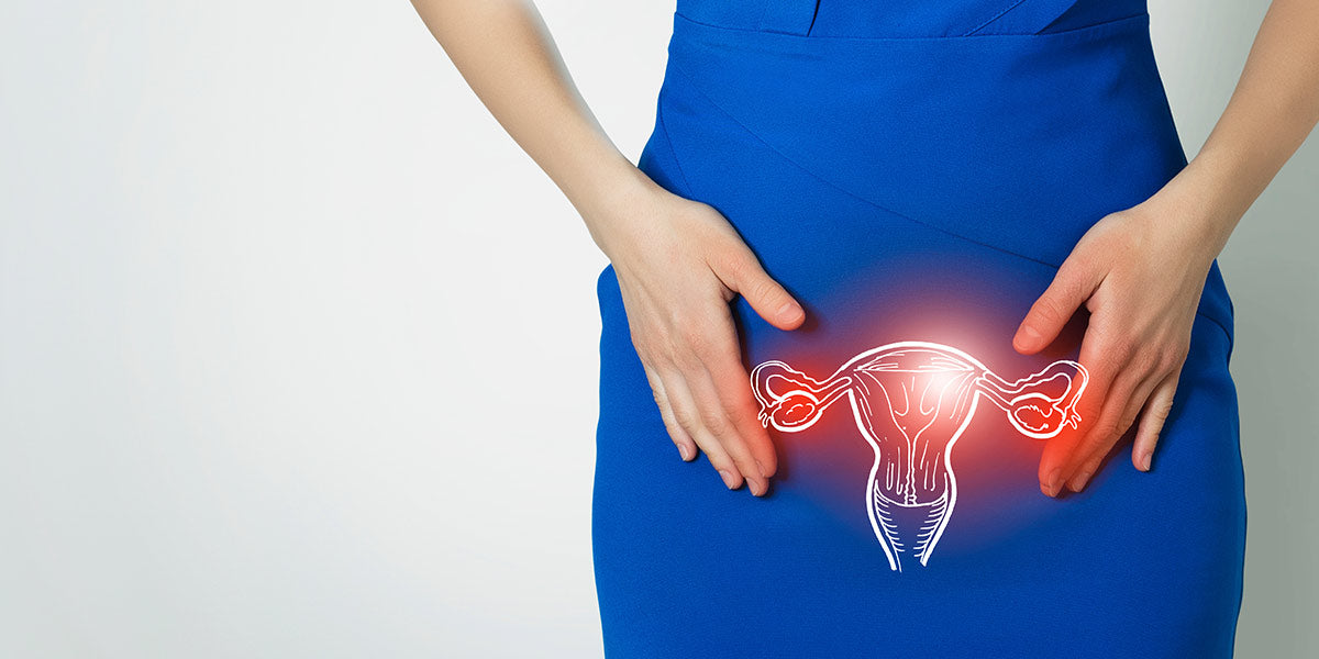 Why we developed periods? - Nutrova