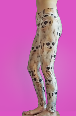 Meerkat Leggings
