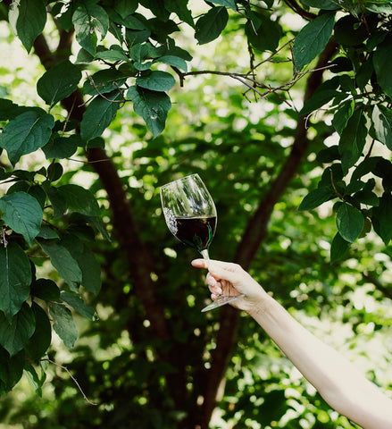 red wine glass beneath the trees