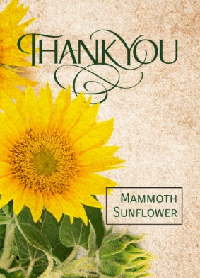 Thank You Sunflower