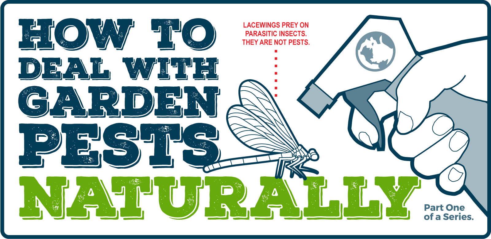 How to deal with Pests Naturally