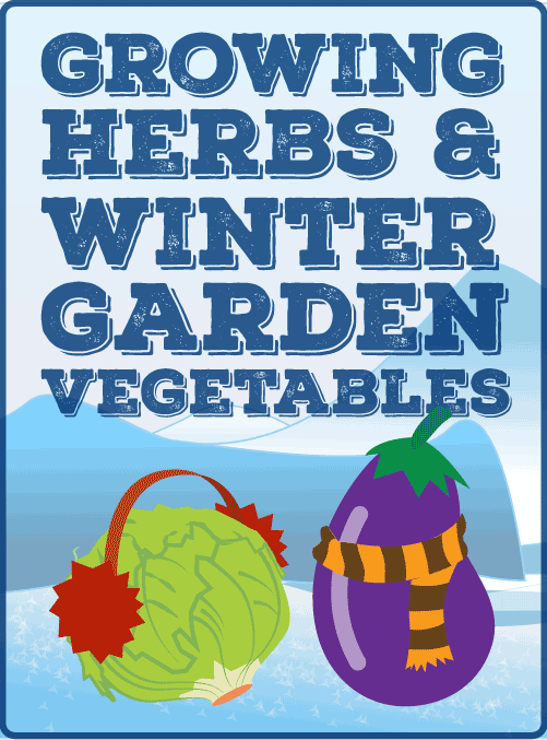 Growing Herbs & Winter Garden Vegetables